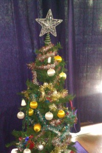 Sami's small but cute Chrissie tree