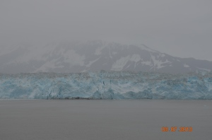 marjorie glacier. jpg